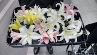お別れのできる直葬火葬式 神奈川セントラル市民葬祭 横浜南部斎場